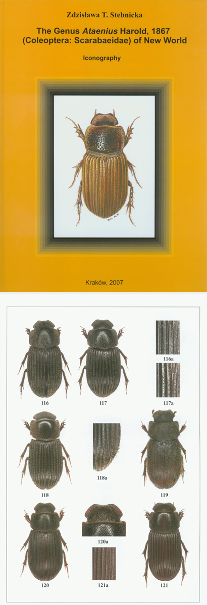 Stebnicka T. Z., 2007, The Genus Ataenius Harold, 1867 (Coleoptera: Scarabaeidae) of New World.