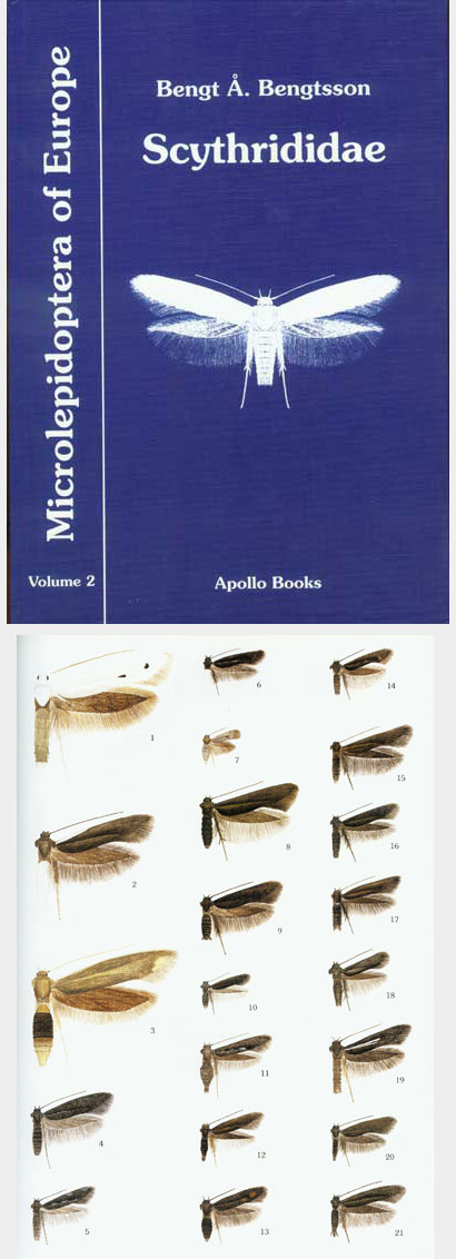 Bengtsson B.A., 1997, Microlepidoptera of Europe: Vol. 2:  Scythrididae.